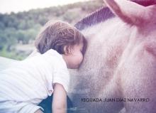 Yeguada Juan Diaz Navarro - Fotografias (14).jpg