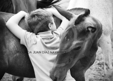 Yeguada Juan Diaz Navarro - Fotografias (19).jpg