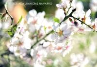 Yeguada Juan Diaz Navarro - Fotografias (42).jpg