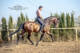 Solano-DN-01-07-19-12