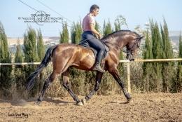 Solano-DN-01-07-19-13