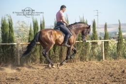 Solano-DN-01-07-19-16