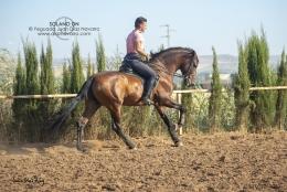 Solano-DN-01-07-19-17