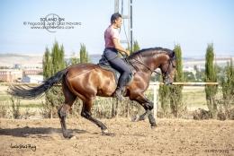 Solano-DN-01-07-19-19