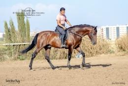 Solano-DN-01-07-19-20