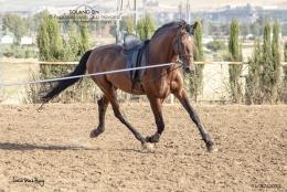 Solano-DN-01-07-19-7