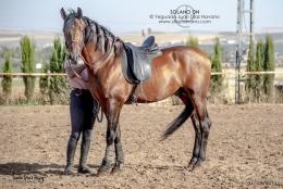 Solano-DN-01-07-19-9
